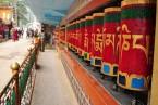 Mcleodgunj Visit and options visits around Dharamsala