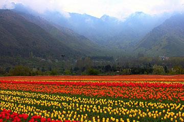 Srinagar-Kashmir 6 Days Tour Package